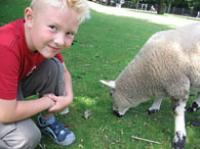 Boy with a lamb